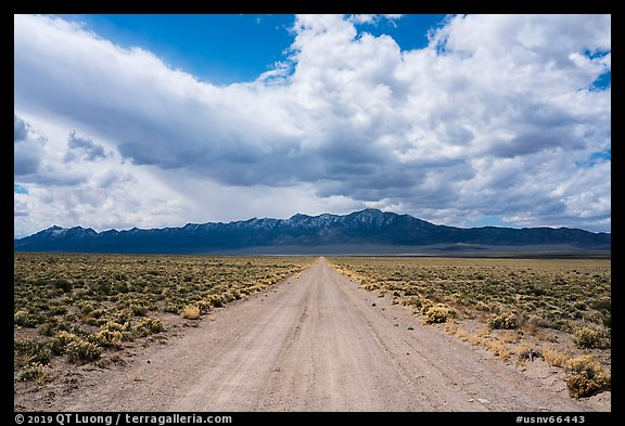 Gravel road. Basin And Range National Monument, Nevada, USA (color)