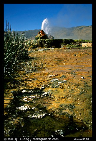 Fly Geyser, Black Rock Desert. Nevada, USA (color)