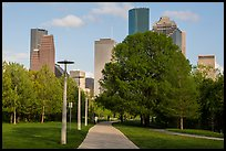 Park, trees, and skyline. Houston, Texas, USA ( color)
