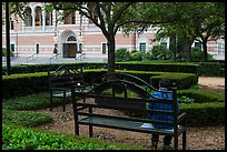 Man reading on bench, Rice University. Houston, Texas, USA ( color)