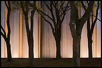 Trees and back Gerald D. Hines Waterwall at night. Houston, Texas, USA ( color)
