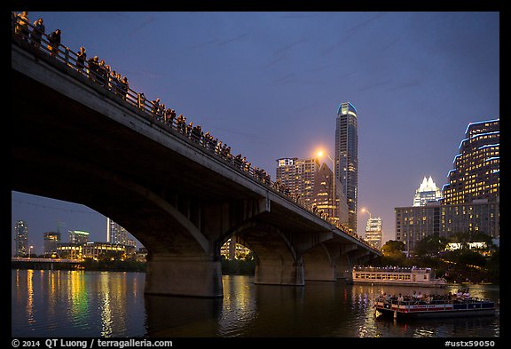 Watching one million bats fly at dusk. Austin, Texas, USA (color)