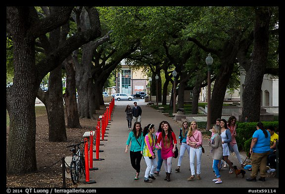 Women students in tree-covered alley, University of Texas. Austin, Texas, USA (color)