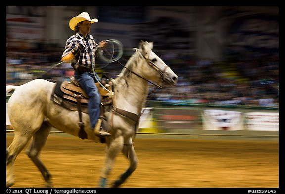 Rodeo contestant riding horse. Fort Worth, Texas, USA (color)