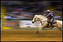Woman on galloping horse, Stokyards Championship Rodeo. Fort Worth, Texas, USA ( color)