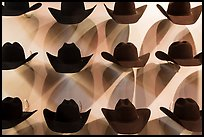Cowboy hats and shadows. Fort Worth, Texas, USA ( color)