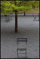 Chairs and trees in courtyard of Dallas Museum of Art. Dallas, Texas, USA ( color)