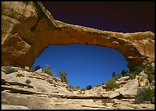 Owachomo Bridge, Natural Bridges National Monument. USA ( color)