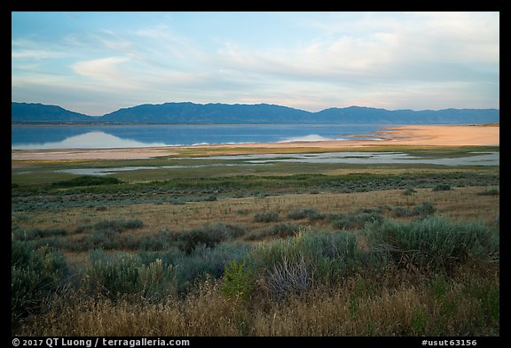 Sagebrush and mountains reflected in Great Salt Lake. Utah, USA (color)