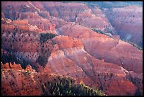 Pictures of Cedar Breaks National Monument
