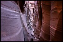 Walls streaked with pink and white stripes, Zebra Slot Canyon. Grand Staircase Escalante National Monument, Utah, USA ( color)