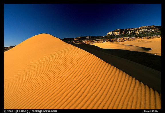 Sand dune at sunset, Coral Pink Sand Dunes State Park. Utah, USA (color)
