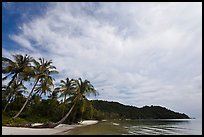 Bai Sau Palm-fringed beach. Phu Quoc Island, Vietnam (color)