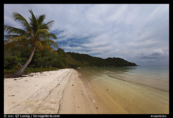 Palm-fringed tropical sandy beach, Bai Sau. Phu Quoc Island, Vietnam (color)