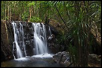 Waterfall flowing in tropical forest. Phu Quoc Island, Vietnam ( color)