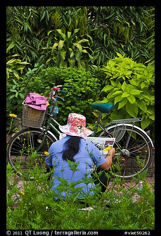 Woman reading newspaper next to bicycle in park. Ho Chi Minh City, Vietnam (color)