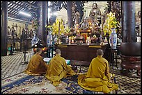 Buddhist monks perform ceremony, Giac Lam Pagoda, Tan Binh District. Ho Chi Minh City, Vietnam (color)