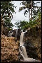 Waterfall flowing under palm trees, Fairy Stream. Mui Ne, Vietnam ( color)