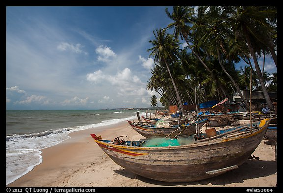 Beach with palm trees and fishing boats. Mui Ne, Vietnam (color)