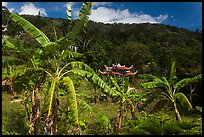 Banana trees, hill, and temple gate. Ta Cu Mountain, Vietnam ( color)