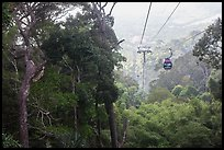 Cable car and tropical forest. Ta Cu Mountain, Vietnam ( color)