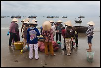 Women gathered on beach around fresh catch. Mui Ne, Vietnam (color)
