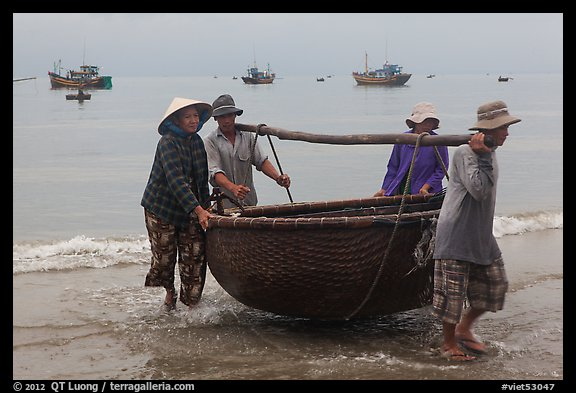 Fishermen carry round woven boat to shore. Mui Ne, Vietnam (color)