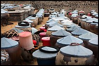 Vats of Nuoc Mam Fish Sauce. Mui Ne, Vietnam (color)