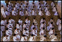 Worshippers dressed in white pray in neat rows in Cao Dai temple. Tay Ninh, Vietnam ( color)
