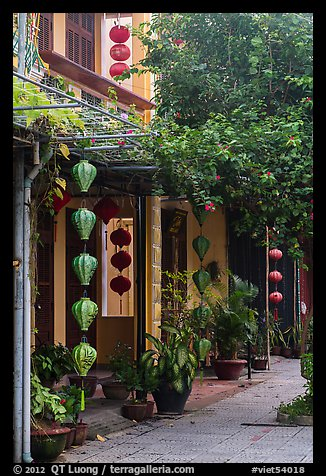Sidewalk and houses with paper lanterns and lush vegetation. Hoi An, Vietnam (color)