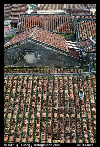 Rooftop detail. Hoi An, Vietnam (color)