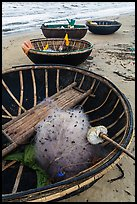 Coracle boats with fishing gear. Da Nang, Vietnam (color)
