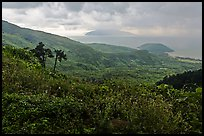 View from Hai Van pass in rainy weather, Bach Ma National Park. Vietnam (color)