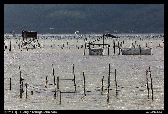 Pilings and fishing nets in lagoon. Vietnam (color)