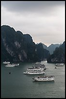 Elevated view of white tour boats and islets. Halong Bay, Vietnam (color)