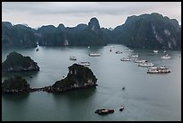 White tour boats and limestone islands covered in tropical vegetation. Halong Bay, Vietnam ( color)