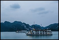 Two tour boats at dawn. Halong Bay, Vietnam (color)