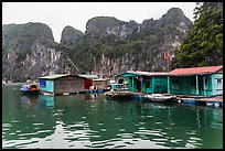 Vung Vieng village below karstic islands,. Halong Bay, Vietnam (color)