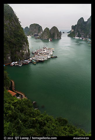 View over bay and boats from Surprise Cave exit. Halong Bay, Vietnam (color)