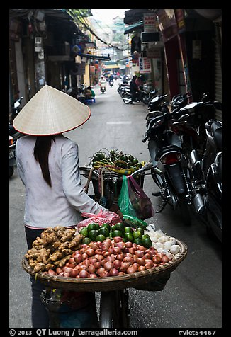 Woman pushing bicycle loaded with vegetable for sale in narrow street, old quarter. Hanoi, Vietnam (color)