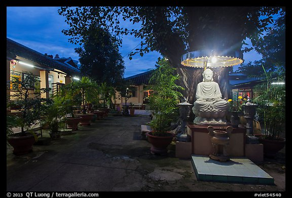 Buddha and banyan tree at dusk, Phung Son Pagoda, district 11. Ho Chi Minh City, Vietnam (color)