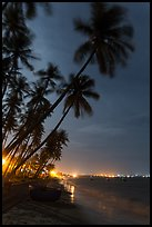 Beach at night with palm trees and coracle boat. Mui Ne, Vietnam ( color)