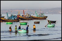 Fishermen use coracle boats to bring back catch from fishing boats. Mui Ne, Vietnam ( color)