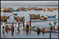 Fishermen and fish buyers on beach, early morning. Mui Ne, Vietnam ( color)