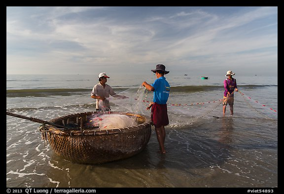 Fishermen folding fishing net into coracle boat. Mui Ne, Vietnam (color)
