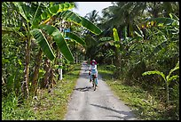 Woman bicycling on narrow road surrounded by banana trees. Ben Tre, Vietnam (color)