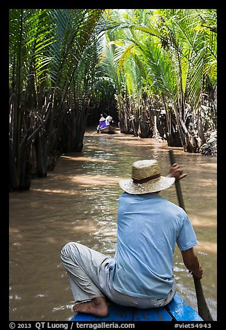 Padding in mangrove-lined narrow waterway, Phoenix Island. My Tho, Vietnam