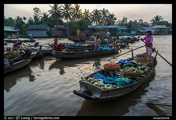 Woman paddles boat loaded with produce, Phung Diem floating market. Can Tho, Vietnam (color)