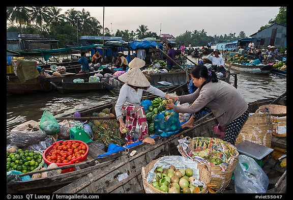 Fruit being sold from boat to boat, Phung Diem floating market. Can Tho, Vietnam (color)