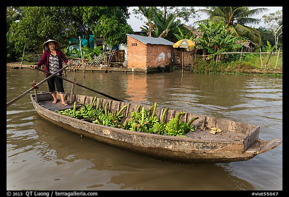 Woman paddling sampan loaded with bananas. Can Tho, Vietnam (color)